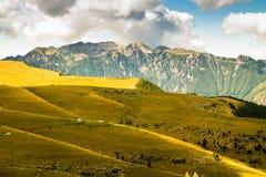 Łąki w górach tworzą sinuous linie Obrazy Stock