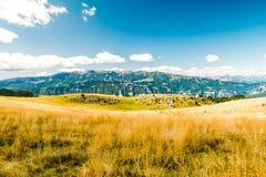 Łąki w górach tworzą sinuous linie Obraz Royalty Free