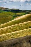 Łąki w górach tworzą sinuous linie Obraz Stock