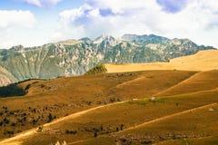Łąki w górach tworzą sinuous linie Zdjęcia Royalty Free