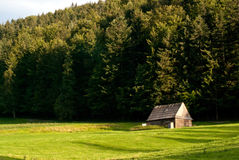 łąkowa góra Obrazy Royalty Free