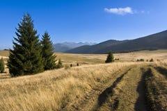 łąkowa góra Obraz Royalty Free
