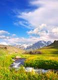 łąkowa rzeka Zdjęcie Royalty Free