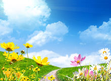 łąkowa wiosna ilustracja wektor