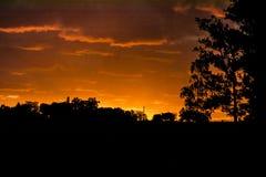 Łąkowa zmierzchu krajobrazu scena, Urugwaj Zdjęcie Stock