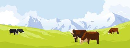 łąkowe krowy Obrazy Royalty Free