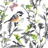 Łąkowi kwiaty, ptak, motyle Bezszwowy kwiecisty wzór, biali kolory akwarela royalty ilustracja