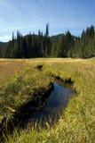 łąkowy halny strumień Zdjęcia Royalty Free