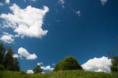 łąkowy lato Obrazy Royalty Free