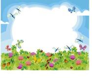 łąkowy lato Obraz Royalty Free