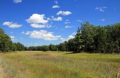 łąkowy Michigan fotografia stock
