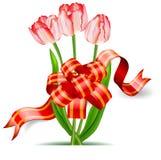 łęków tulipany Obraz Stock