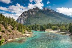 Łęk Rzeczny Banff, Kanadyjskie Skaliste góry Zdjęcie Stock