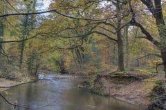 Łęk W rzece Zdjęcie Royalty Free