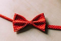 Łęku krawat Zdjęcie Stock