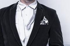 Łęku krawat Obraz Stock