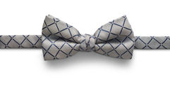 Łęku krawat odizolowywający na białym tle zdjęcie royalty free
