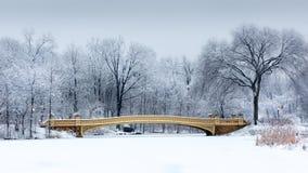 Łęku most w central park, NYC Obraz Stock