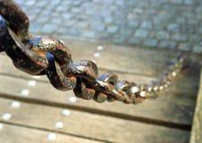 łańcuch rdzewiejący Obrazy Royalty Free