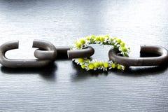 Łańcuch silny jest tylko równie jak swój słaby połączenie Fotografia Stock