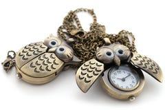 łańcuchu długi sowy zegarek Fotografia Stock