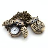 łańcuchu długi sowy zegarek Obrazy Stock