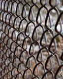 Łańcuszkowego połączenia ogrodzenia zakończenie Up obraz royalty free