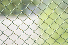 Łańcuszkowego połączenia ogrodzenie z Białym tłem Obrazy Royalty Free