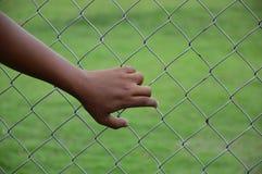 Łańcuszkowego połączenia ogrodzenie z mężczyzna ręką, selekcyjna ostrość Zdjęcie Stock