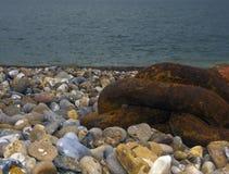 Łańcuszkowi połączenia na plaży przy Aldeburgh, Suffolk, Anglia obrazy royalty free