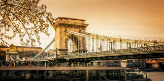 łańcuszkowy Budapest bridżowy szechenyi Zdjęcia Stock