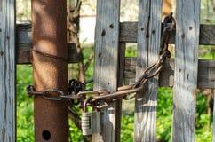 Łańcuszkowy kędziorek na drewnianym ogrodzeniu obraz stock