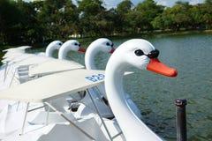 Łabędź pedałuje łodzie Zdjęcie Royalty Free