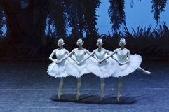 Łabędzi jeziorni baletniczy tancerze Obraz Royalty Free