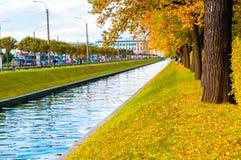 Łabędzi kanału i jesieni park z złotymi jesieni drzewami Jesieni miasta krajobraz święty Petersburg, Rosja Obraz Stock