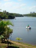 Łabędzia łódź na parkowym jeziorze Fotografia Royalty Free