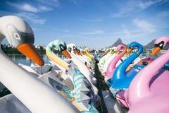 Łabędzia łodzi Lagoa Rio De Janeiro Brazylia Sceniczna linia horyzontu zdjęcia royalty free