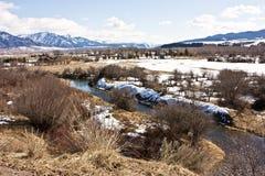 Łabędzia dolina Zdjęcia Royalty Free