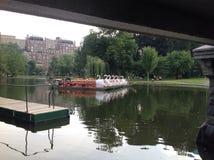 Łabędzie łodzie Zdjęcie Stock