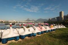 Łabędzie łodzie przy laguną zdjęcie royalty free