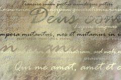 Łaciński tekst na brown grunge tle ilustracja wektor