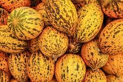 Łaciaści Tureccy żółci melony Kavun wystawiający na jedzenie rynku w Kyrenia, Północny Cypr obraz stock