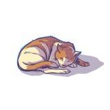 Łaciasty kota dosypianie fryzujący up ilustracji