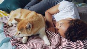 Ładna amerykanin afrykańskiego pochodzenia nastoletnia dziewczyna i jej lojalny pies śpimy wpólnie na łóżku w domu, osoba ściskam zbiory