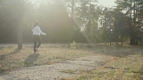 Ładna brunetka chodzi z Złotobarwnym labradorem w wiosna lesie zbiory