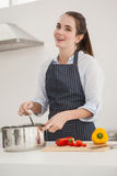 Ładna brunetka gotuje zdrowego posiłek Zdjęcia Stock