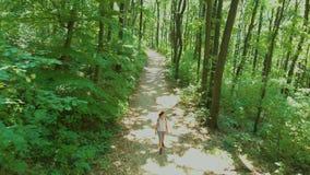 Ładna dziewczyna na drodze przemian w bukowym lesie, powietrzny trutnia materiał filmowy zbiory