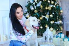 Ładna dziewczyna siedzi blisko psa w studiu na lekkim tle ogień Obraz Royalty Free