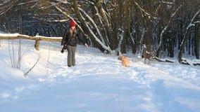 Ładna dziewczyna w czerwonym kapeluszowym odprowadzeniu z psem w śnieżnym lesie zdjęcie wideo
