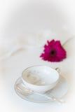 Ładna filiżanka i spodeczek z menchia kwiatem Fotografia Royalty Free